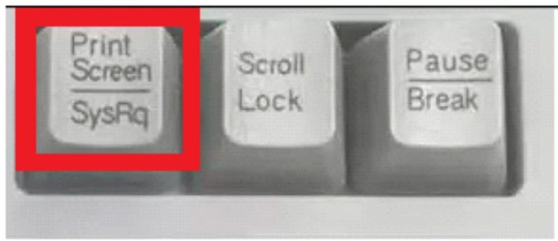 кнопка копировать